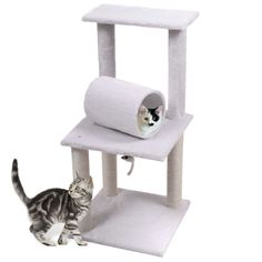 Scratching Post Cat Tunnel
