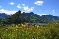 Sattel (Kanton Schwyz) - View to / Blick auf / Vue à Seewen, Urmiberg and Lauerzersee