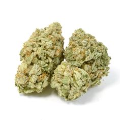 The Blue Dream Strain, a sativa-dominant hybrid getting its roots from California. Since the beginning of its journey, Blue Dream has spread its wings and flown great distances on its way to world wide fame