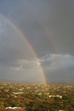 Tucson, AZ  - Saturday's rain left this in its wake.