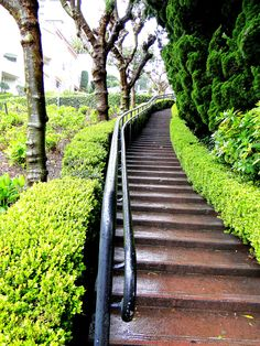 the pedestrian stairs in Lombard street ( San Francisco) Stair Art, Lombard Street, Pedestrian, Railroad Tracks, Photo Art, San Francisco, Sidewalk, Stairs, Usa