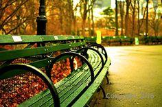 "Historic Photo ""Central Park"" , 8 x 10 Inches Paper Moon ... https://www.amazon.com/dp/B01MTUPEN8/ref=cm_sw_r_pi_dp_x_HOvCybY95RXQS"