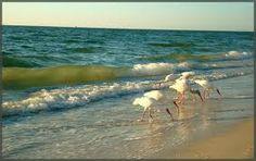 at da beach