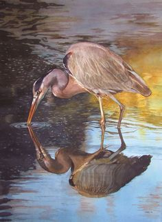 Sarah Buell Dowling, Watercolor of Great Blue Heron