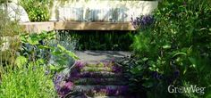 Suntrap patio with herbs