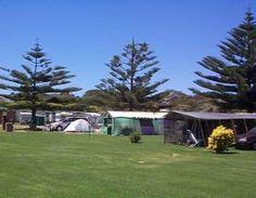 Spacious grass #camping sites - BIG4 Narooma Holiday Park #NSW