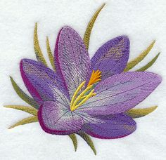 Machine Embroidery Designs at Embroidery Library! - Color Change - F9750 9139198