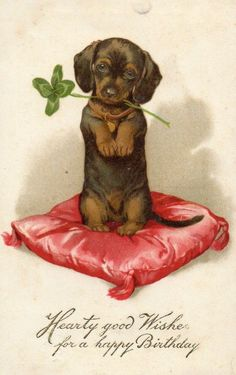 Vintage Dachshund birthday card