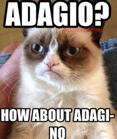 Adagi-no ballet grumpy cat