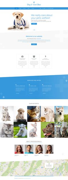 Pet Sitting Web Template http://www.templatemonster.com/website-templates/dog-cat-clinic-website-template-57690.html