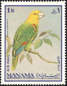 Yellow-headed Amazon stamps - mainly images - gallery format