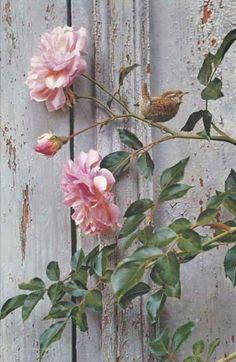 Summer...Bird & Roses