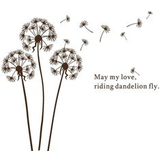 simple line drawing of dandelion - Google Search