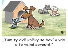 pavel kantorek | Plzeň.cz Humor, Scooby Doo, Funny, Fictional Characters, Humour, Funny Photos, Funny Parenting, Fantasy Characters, Funny Humor