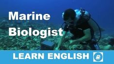 Középfokú Hallott Szöveg Értése Feladat Marine Biologist Hallgasd meg a tengerbiológusról szóló szöveget és válaszolj angolul a következő kérdésekre Listening Test, Listening Skills, English Lessons, Learn English, The Ocean, Learn Something New Everyday, Improve Your English, Work With Animals, English Reading