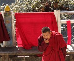 Betelnusskauen produziert vielleicht auch Glück, sicher aber Wärme. Foto: Doris Bhutan, Red Leather, Leather Jacket, Photos, Studded Leather Jacket, Leather Jackets, Fur Jacket
