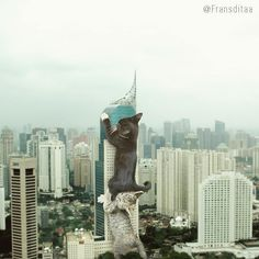 Catzillas: Giant Cats In Urban Landscapes - CutesyPooh Funny Meme Pictures, Funny Cat Videos, Funny Animal Pictures, Cute Cats, Funny Cats, Funny Animals, Cute Animals, Photomontage, Giant Cat