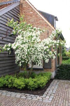 Back Garden Design Idea Hintergarten-Design-Idee Back Gardens, Small Gardens, Outdoor Gardens, Small Cottage Garden Ideas, Garden Cottage, Family Garden, Backyard Ideas For Small Yards, Backyard Designs, Back Garden Design
