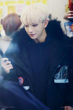 Joshua my love