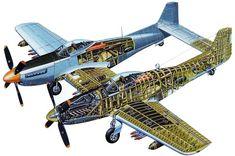 Plane Cutaway