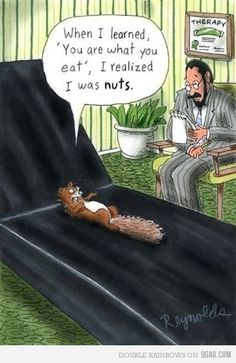 I do pretty much live on sunflower seeds ~ A little humor! kn