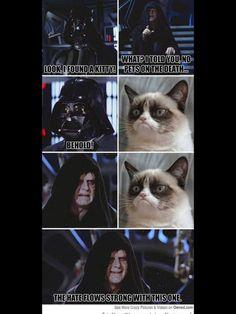 star wars grumpy cat - photo #20