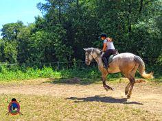 Os Parrulos: Clases de equitación en Os Parrulos, Un día completo. (28 fotos)