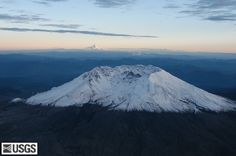 St. Helens and Rainier look over a wildflower meadow - Google Search
