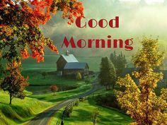 Happy Tuesday Morning