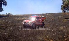 Campomaiornews: Chamas devastaram 13 hectares entre pasto e sobrei...