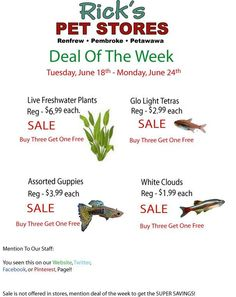 Deal of the week June 18th - June 24th