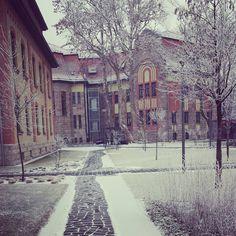 Winter on ❄❄❄ Hungary, Budapest, Restoration, Park, Architecture, Building, Winter, Instagram Posts, Arquitetura
