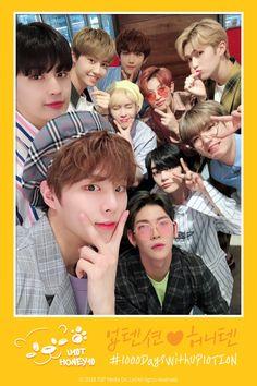 """업텐션(UP10TION) on Twitter: """"[#업텐션] 데뷔 1000일을 축하합니다🎉 #1000DaysWithUP10TION #업텐션_허니텐_1000일_되는_날💛… """" Perfect 10, Im Trying, Kpop Boy, Korean Singer, Boy Groups, Worship, Fandoms, Boys, Cute"""