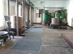 OLEÍCOLA SAN FRANCISCO Old mill facilities