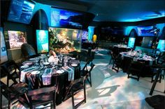 Congratulations to the team at the Vancouver Aquarium Marine Science Centre for winning at the Canadian Special Events Magazine last night, 'Best Event Produced for a Community Based Charitable Organization' for Night at the Aquarium Vancouver Aquarium, Event Decor, Corporate Events, Special Events, Centre, Congratulations, Community, Science, Organization