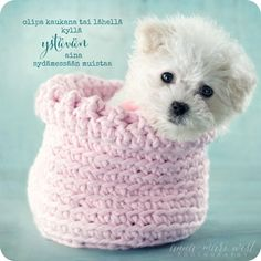 Postikortti Ystävän muistaa aina Powerful Words, Happy Day, Friendship Quotes, Wise Words, Cats And Kittens, Favorite Quotes, Dogs And Puppies, Projects To Try, Valentines