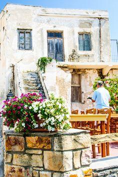 The Gardener - Naxos, Greece