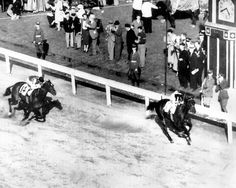 War Admiral  1937  War Admiral, son of what many consider the greatest Thoroughbred racehorse of all time, Man o' War, won an impressive 21 of 26 starts, just behind rival Seabiscuit