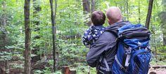 Quelques conseils pour des randonnées en forêt agréables #WoodsExplorer