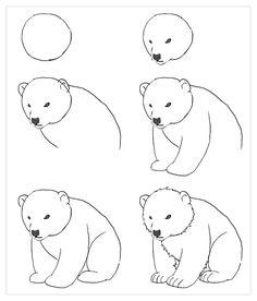 Easy drawings of bears easy drawings doodle drawings easy animal drawings polar bear cartoon polar bears . Doodle Art, Doodle Drawings, Easy Drawings, Drawing Sketches, Pencil Drawings, Sketching, Polar Bear Drawing, Tracing Pictures, Easy Pictures To Draw