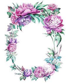"""1,713 Beğenme, 14 Yorum - Instagram'da Юля Андерсен (@jul_andersen): """"Final for @krasota_v_detalyah  #botany #botanical #botanicalillustration #illustration…"""""""