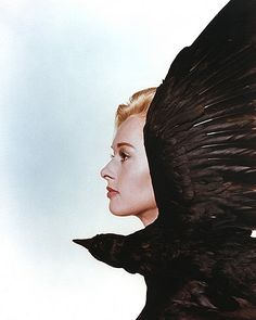 Photo Tippi Hedren Alfred Hitchcock The Birds Hollywood Stars, Classic Hollywood, Old Hollywood, Hollywood Actresses, Tippi Hedren, Stanley Kubrick, Photomontage, Alfred Hitchcock The Birds, Hitchcock Film
