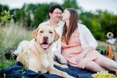 © Leo Timoshuk Photography | Daily Dog Tag | Yellow-#Lab-picnic-engagement-session