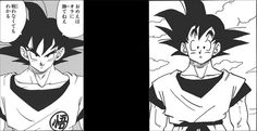 photo GokuSymbol.jpg
