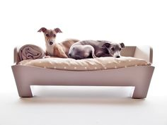 Raised Wooden Dog Bed - Tino & Theo certainly approve!
