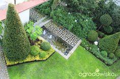 Ogród nie tylko bukszpanowy - część II - strona 335 - Forum ogrodnicze - Ogrodowisko