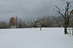 Neve, Villa Collemandina