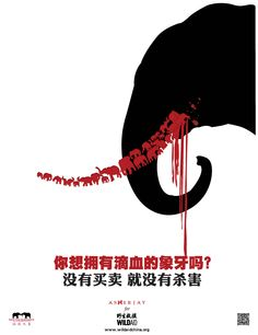 A newspaper story about the impact of the ivory trade has gone viral in China, raising awareness among millions of Chinese, reports the Wildlife Conservation Society. Design Poster, Ad Design, Logo Design, Poster Designs, Poster Ideas, Layout, Design Editorial, Creative Advertising, Grafik Design