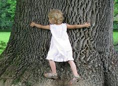 20 random reasons to really love trees
