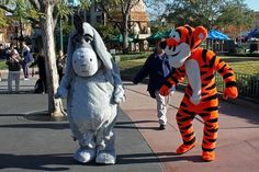 And Tigers and Donkeys oh my